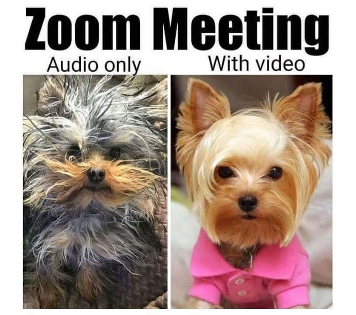 zoom meetings wifi repair